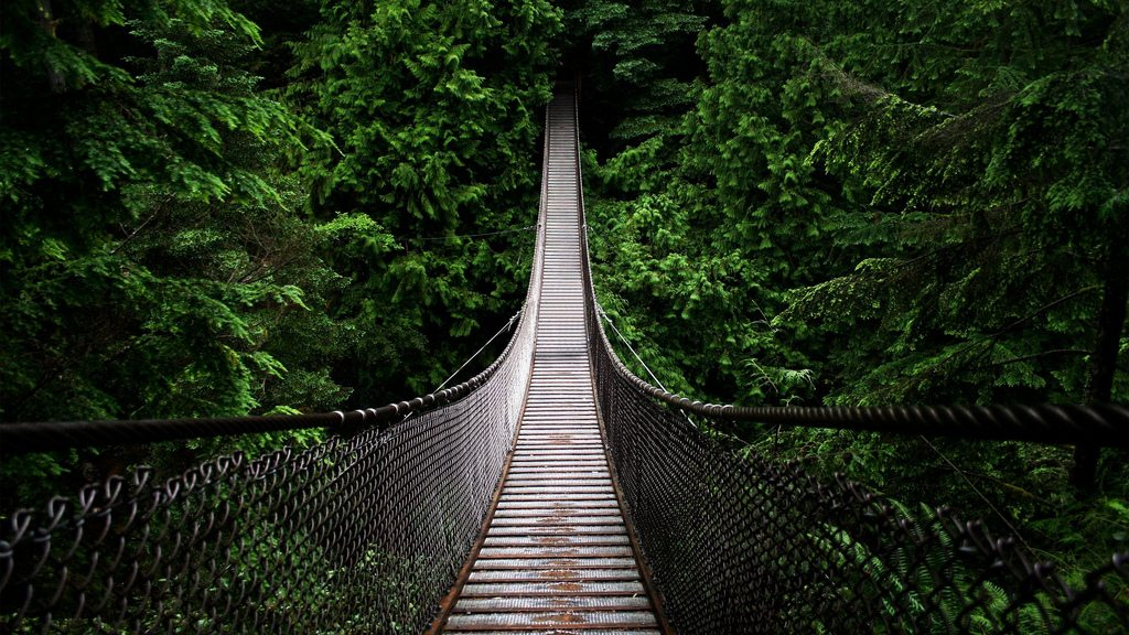 Hiking North America's Most Frightening Stairs & Bridges