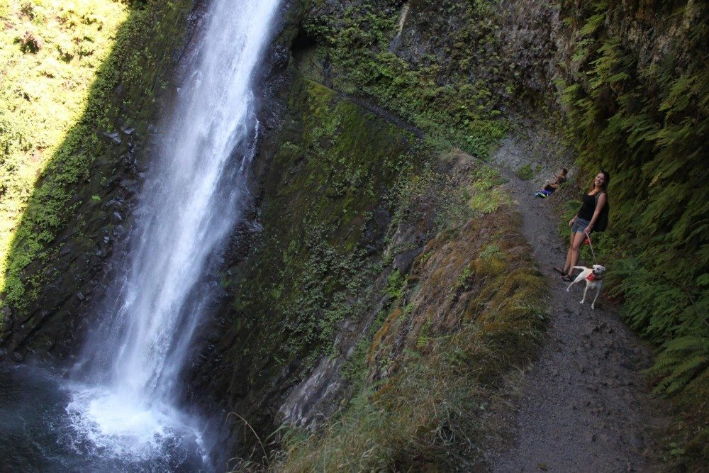12 of the Best Waterfall Hikes in the US