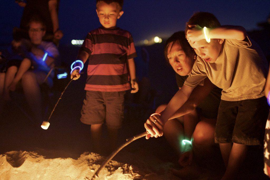 7 Tasty Campfire Marshmallow Desserts
