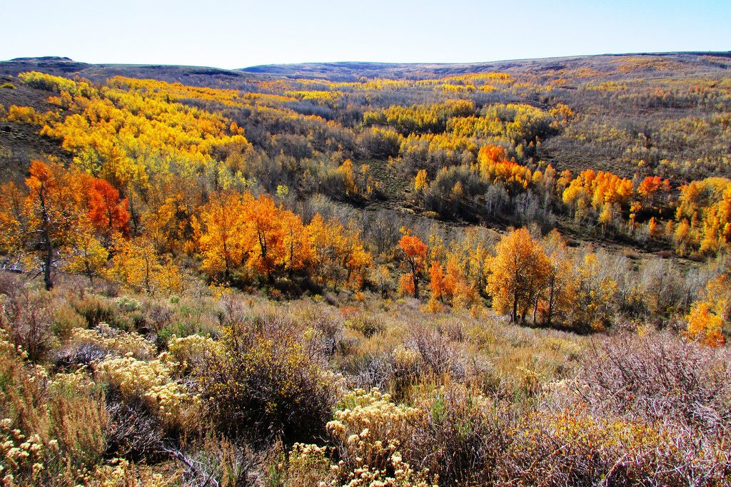 6 Amazing Hikes to See Fall Foliage