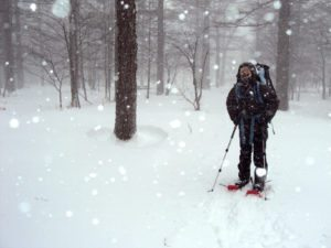 winter backcountry, elements of the winter backcountry, winter backcountry elements