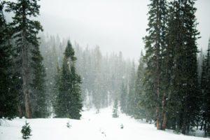 Christmas, holidays, backcountry lover, Christmas, stocking stuffers