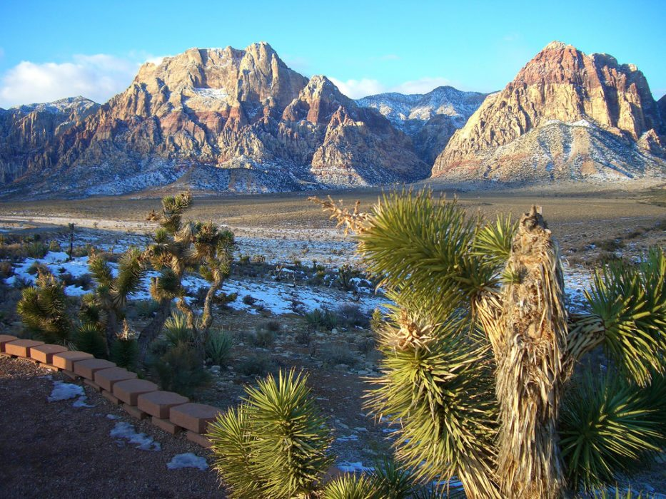 The Surprising Hiking Trails Around Las Vegas
